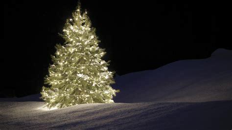 weihnachtsbaum schneit wallpaper part 2 let s talk about