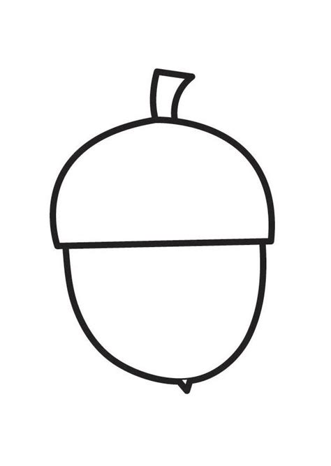 acorn squash coloring page coloring page acorn img 18358
