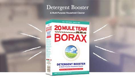 20 mule team borax wikipedia the free encyclopedia 20muleteamlaundry com 20 mule team borax ie9 home