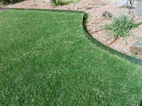what should you in buying metal landscape edging