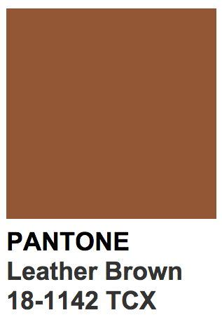 pantone brown 24 best blue greys images on pinterest color swatches