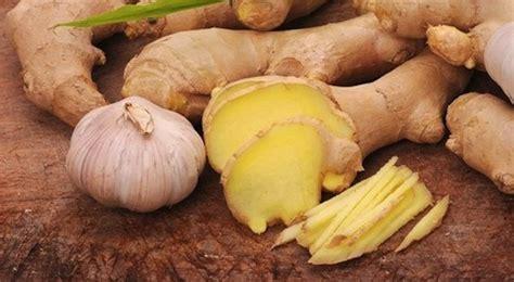 alimentazione per combattere il cancro zenzero le ricette pi 249 gustose per combattere il cancro