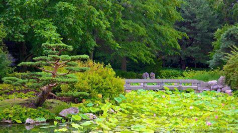 Montréal Botanical Garden Montreal Botanical Garden In Montreal Expedia