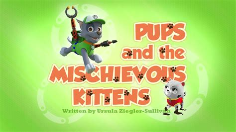 Hall And Parlor House pups and the mischievous kittens paw patrol wiki