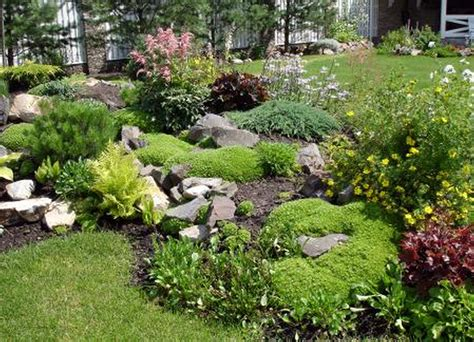 simple rock garden ideas for small gardens size front