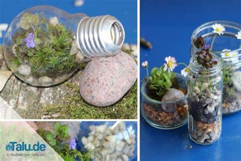 Mini Terrarium Selber Bauen by Miniterrarium Selber Bauen Anleitung In 4 Schritten