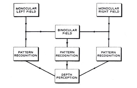 history of pattern recognition iaslonline netart history of computer art iii 2 computer