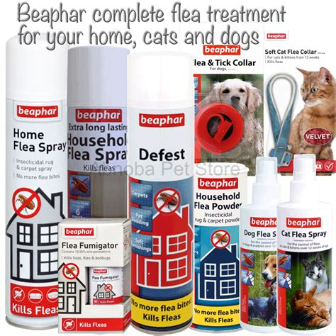 home remedies for fleas in carpet and furniture 28