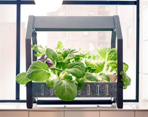 ikea indoor garden grow your next salad dish with this indoor garden preen