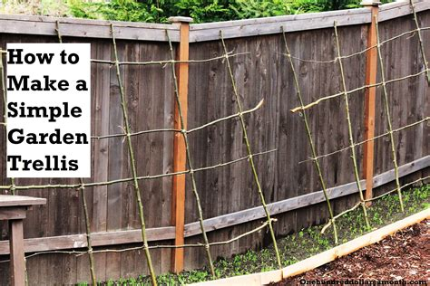 build a garden trellis diy how to build a garden trellis for beans plans free