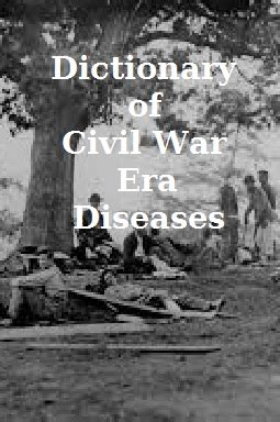 disease and at war the civil war letters of surgeon d benton 111th and 98th new york infantry regiments 1862 1865 books the war for southern independence 187 our catalog a