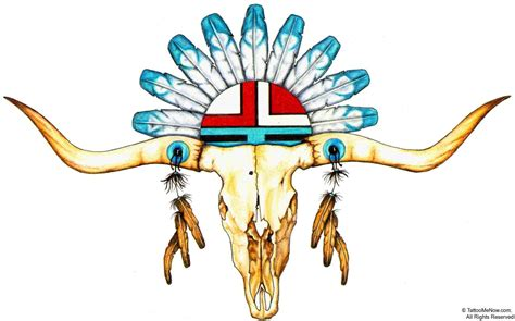 longhorn skull drawing clipart best