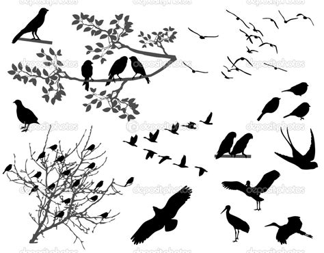 bird silhouette tattoo silhouette birds designs images