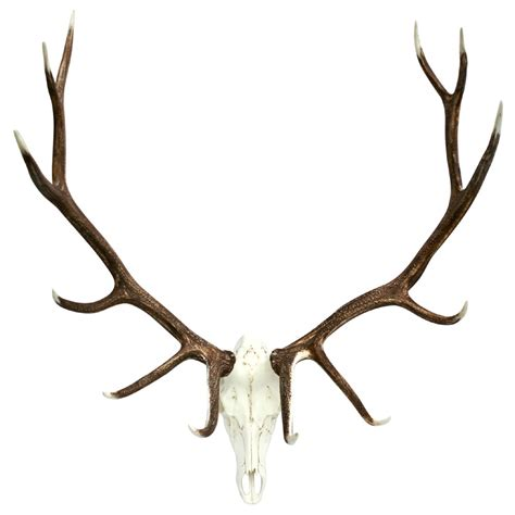 rustic elk european decor