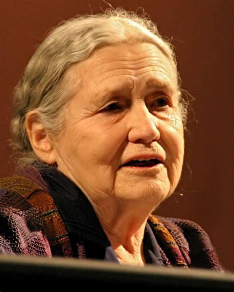 to room nineteen doris lessing