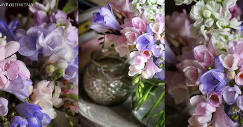 immagini fiori primaverili immagini fiori primaverili