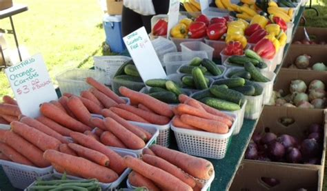 blackburnnews com marine unit to grow blackburnnews com fruit vegetable voucher program returns