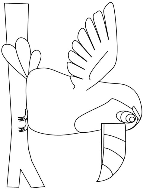 coloring page of a toucan bird printable birds toucan animals coloring pages