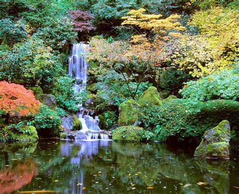 Portland Gardens by Portland Japanese Garden A Place Of Serenity And