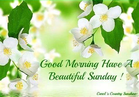 sunday good morning beautiful quot good morning have a beautiful sunday quot via carol s