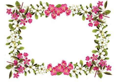 vintag flower border  clipartioncom
