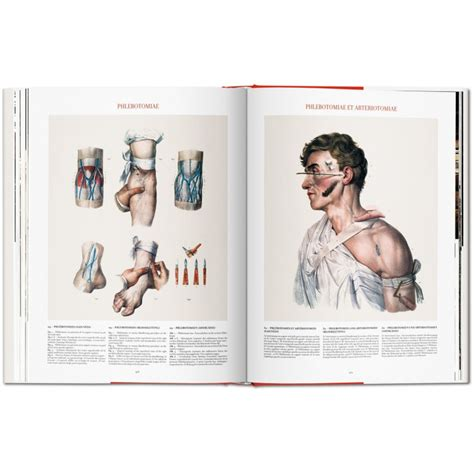 libro bourgery atlas of human bourgery atlas of human anatomy and surgery iep taschen libri it