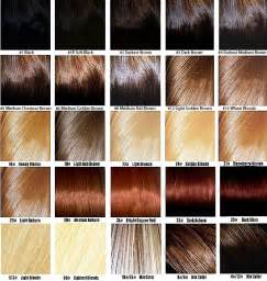 color chart for hair sallys hair color chart images