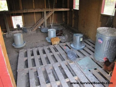Chicken House Floor by Spent Day Cleaning Out Chicken House Rural Lifestyle
