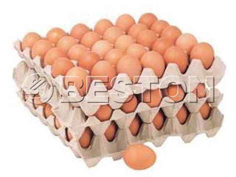 How To Make Paper Egg Trays - egg tray machine price beston machinery