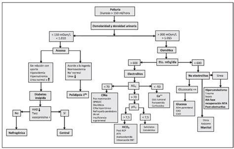 lade sodio enfoque pr 225 ctico para el diagn 243 stico y tratamiento de los