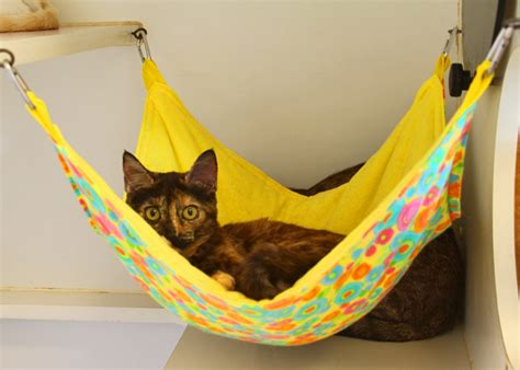 Make Cat Hammock cats on cat hammock outdoor cat enclosure and
