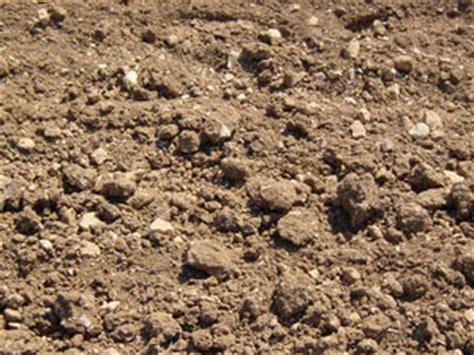 le type de pierre utilisee sera du calcaire tendre le travail se sol calcaire mieux le conna 238 tre et comment le cultiver