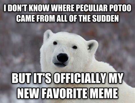Bear Meme Generator - livememe com popular opinion polar bear