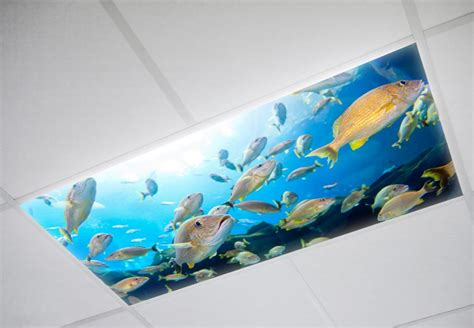 Fluorescent Light Fixture Diffusers Panels And Covers Fluorescent Light Fixture Diffusers Panels And Covers Fluorescent Gallery Fg1206 01 24b