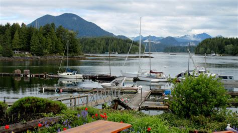 Zodiac Home Decor 15 reasons why tofino is the best place in canada