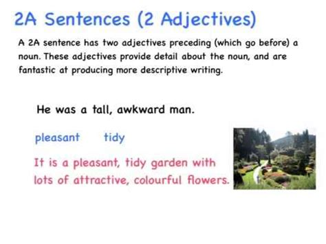 use section in a sentence 2a sentence instruction video youtube