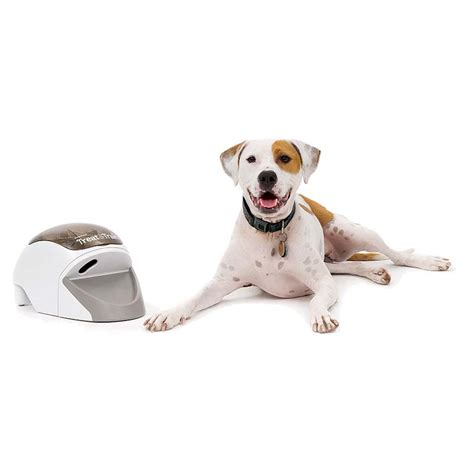 remote puppy treat remote system formerly the manners minder