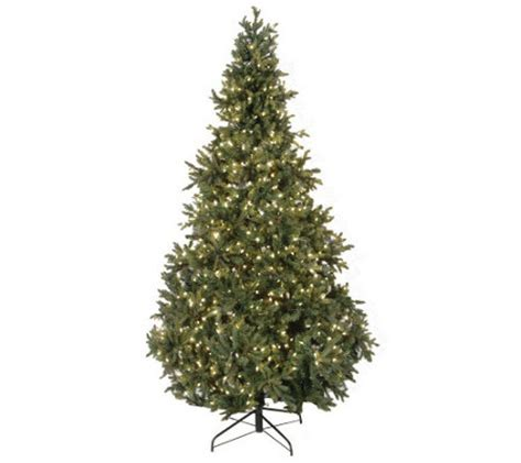 wwwqvccomprelit christmas trees bethlehemlights 9 prelit noble fir tree qvc