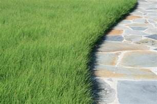 Home Design Alternatives by Hey California You Can Still Have A Lawn Here Are Five