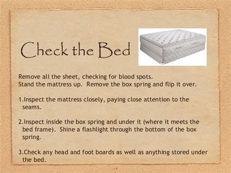 How To Check A For Bed Bugs by Ga Bed Bugs