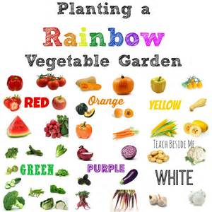 garden vegetables list planting a rainbow vegetable garden teach beside me