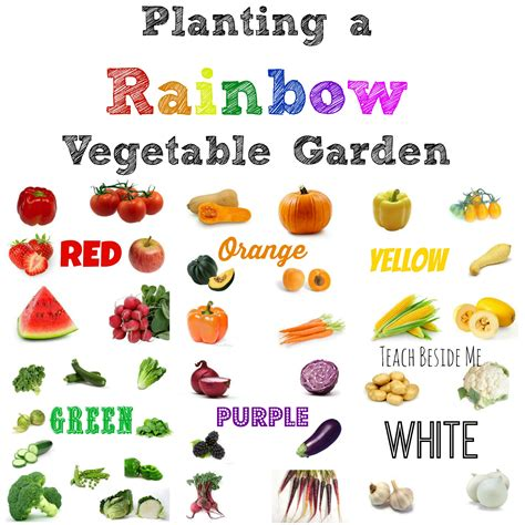 List Of Garden Vegetables Planting A Rainbow Vegetable Garden Teach Beside Me