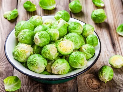 can dogs brussel sprouts can dogs eat brussels sprouts organic facts