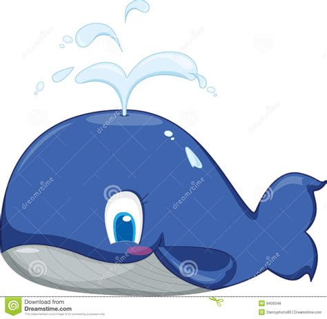 ballena azul fotos de archivo libres de regal 237 as imagen
