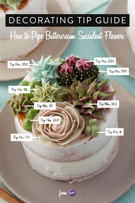 buttercream piping 101 decorating tips designs here s a decorating tip guide to piping buttercream succulent flowers learn how to use the