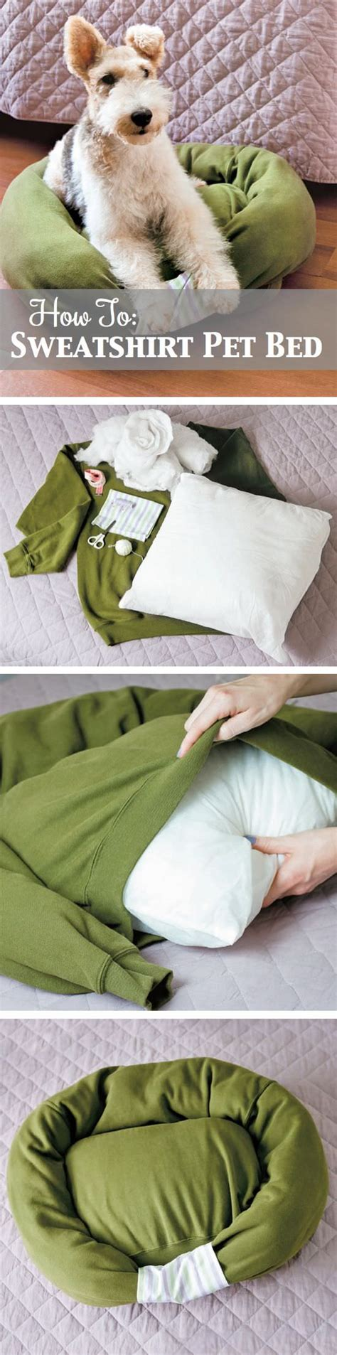 diy sweatshirt pet bed sniff design studio