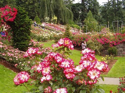 Gardening In Oregon by Portland Oregon Garden I Oregon