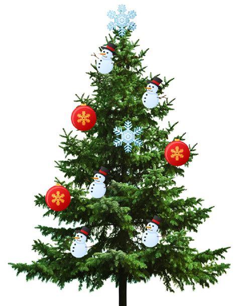 best real christmas tree nz tree nzmaths