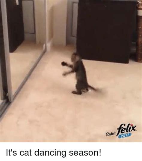 Dancing Cat Meme - 25 best memes about cat dancing cat dancing memes