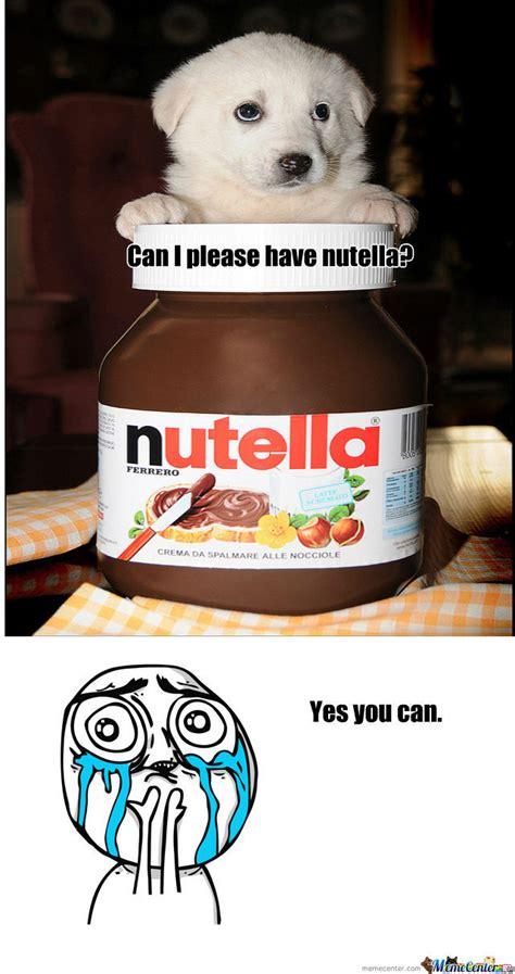 Why Do Dogs Go Blind Super Cute Nutella Dog By 1animefreak1 Meme Center